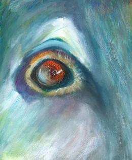 Koda Eye